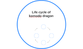 Life cycle of komodo by larry salchenberg on Prezi