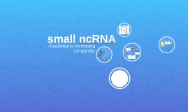 small ncRNA