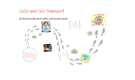 Cells and Cell Transport
