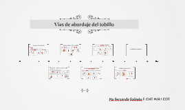 Copy of Vias de abordaje del tobillo