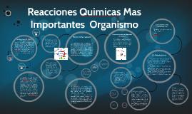 Copy of Reacciones Quimicas Mas Importantes  organismo