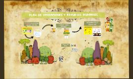 Copy of PLAN DE OPERACIONES Y RECURSOS HUMANOS - SALSAS MAKI