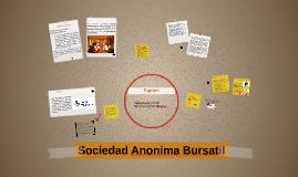 Copy of Sociedad Anonima Bursatil