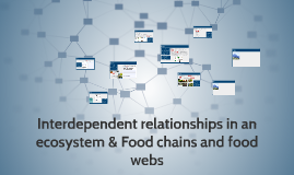 Science-Interdependent relationships in an ecosystem & Food chains