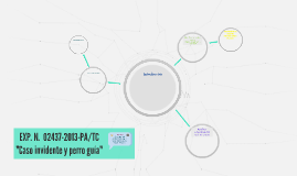 EXP. N.° 02437-2013-PA/TC