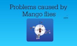 Copy of PWS Mangoflies 1
