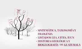 HISTORIA GEOLÓGICA Y BIOGEOGRÁFICA  DE GUATEMALA