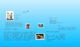 Copy of Seguridad Industrial