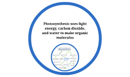Copy of Photosynthesis uses light energy, carbon dioxide, and water