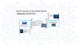 6.07 In search of the Giant Squid