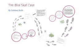 Copy of The Bilal Skaf Case