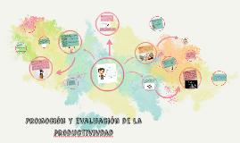 Promoción y evaluación de la productivivdad