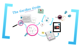 Copy of The Cardiac Cycle