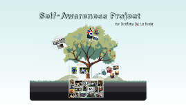 Self-Awareness Project