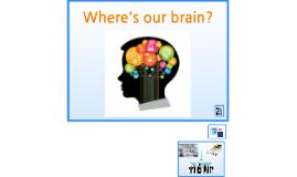 Where's our brain?