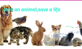 save an animal,save a life