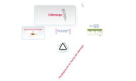 Capitulo 1: Liderazgo (Lussier & Achua)