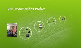 Rat Decomposition Project