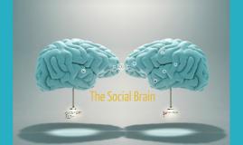 Social Brains