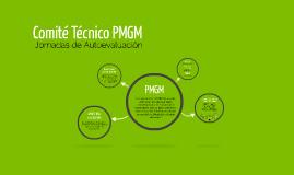 Comite Tecnico PMGM