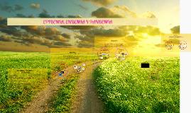 Copy of EPIDEMIA, ENDEMIA Y PANDEMIA