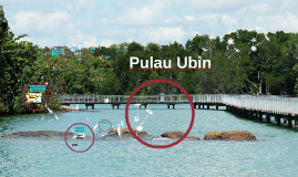 Copy of Pulau Ubin as of 18 July