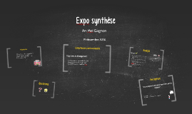 Expo synthèse