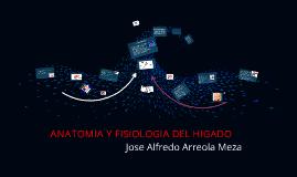 Copy of ANATOMIA Y FISIOLOGIA DEL HIGADO