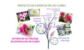 Proyecto de Exportación de Flores