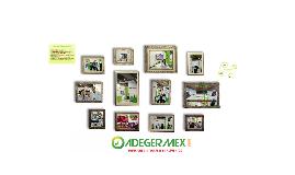 ADEGERMEX 2015