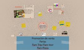 Copy of Marketing mix: Publicidad y promoción