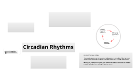 explanations of circadian rhythms Is it possible to completely reset your circadian rhythm for emotional healing and lessened anxiety levels yes, and here's how to do it.