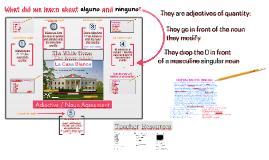 TE E2 Adjective / Noun Agreement