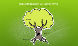 Sustainable Logging in U.S. National Forests