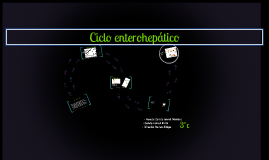Copy of Ciclo enterohepático