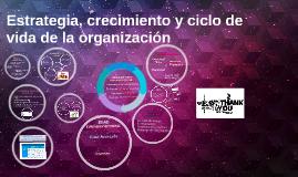 Estrategia, crecimiento y ciclo de vida de la organización