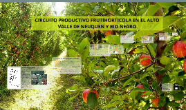 Copy of CIRCUITO PRODUCTIVO FRUTIHORTICOLA