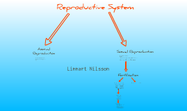 Copy of Standard Grade Biology