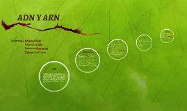 Copy of ADN Y ARN