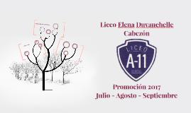 Liceo Elena Duvauchelle Cabezón