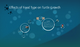 Effects of Food Type on Turtle Growth