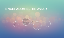 Copy of ENCEFALOMIELITIS AVIAR