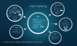 Web Marketing - IT 2013 (IBM)