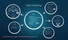 Web Marketing - IT 2013 (IBM)