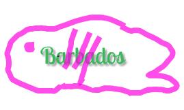 Barbadous