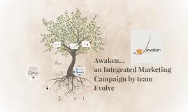 IMC for Team Evolve