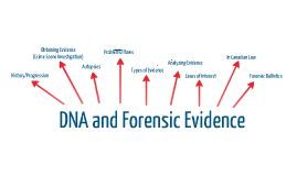 dna evidence Dna evidence to connect to your veteran ancestors may 26, 2017 may 26, 2017 by mary eberle memorial day is upon us it's a day to honor those who served in the military maybe you're a member of the daughters of the american revolution (dar), sons of the american revolution (sar), or another lineage society  dna evidence is used to.