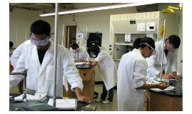 Trabajo Bioquimica