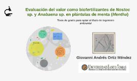 Evaluación del valor como biofertilizantes de Nostoc sp.