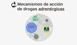 Copy of Mecanismos de acción de drogas adrenergicas